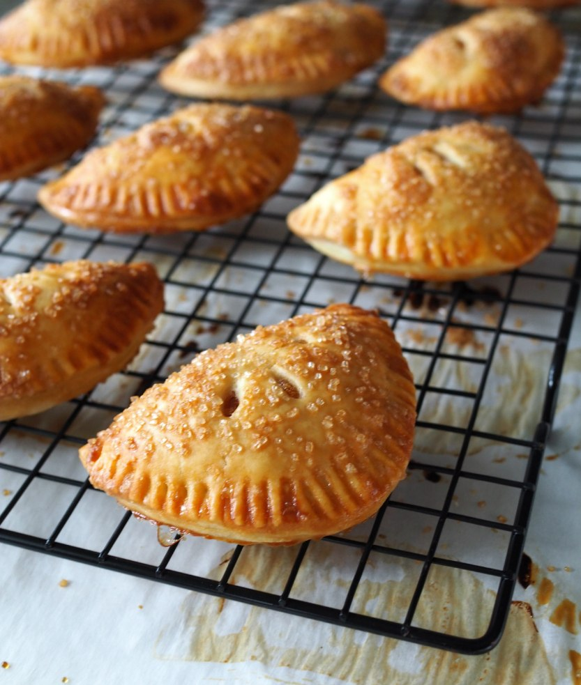 09_nectarinehandpies